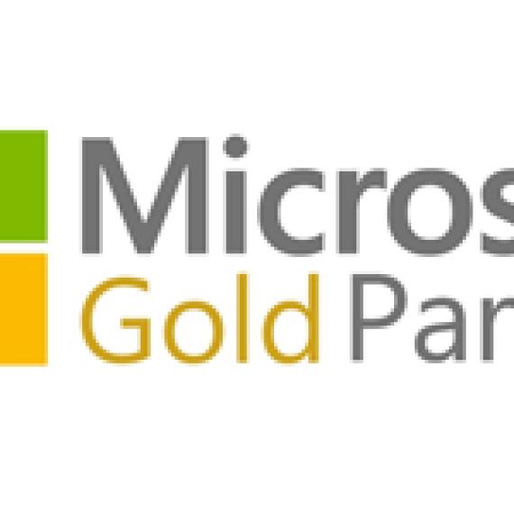 Microsoft Gold Partner - Nebula